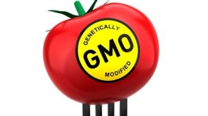 Pompeo-bill-would-preempt-state-GMO-labeling_strict_xxl