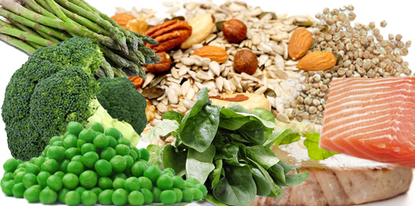 Incorporating Plant-Based Proteins