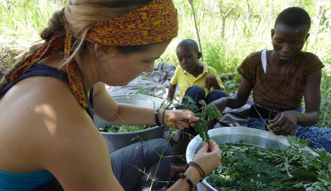 Traditional African Moringa Sauce