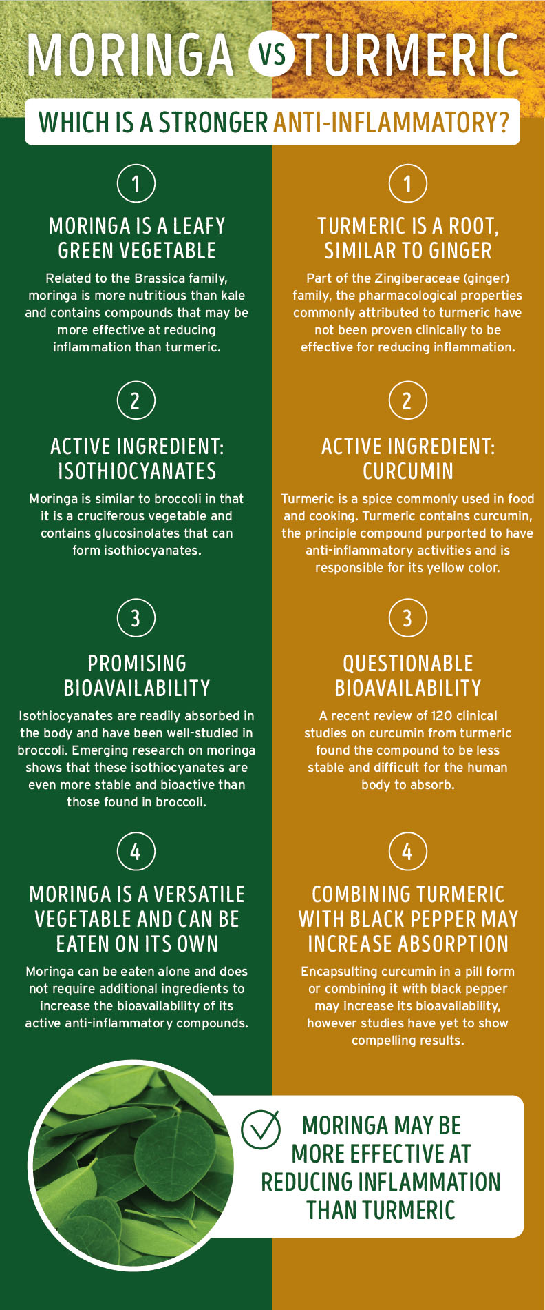 Moringa vs turmeric anti-inflammatory infographic – long version