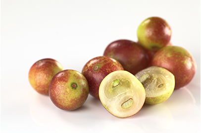 Camu Camu is high in Vitamin C