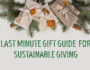 Last Minute Sustainable Gift Ideas