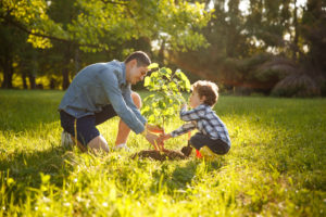 Planting a Sycamore Tree for Earth Month