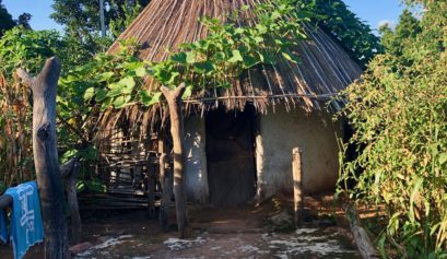 Village Huts in Senegal