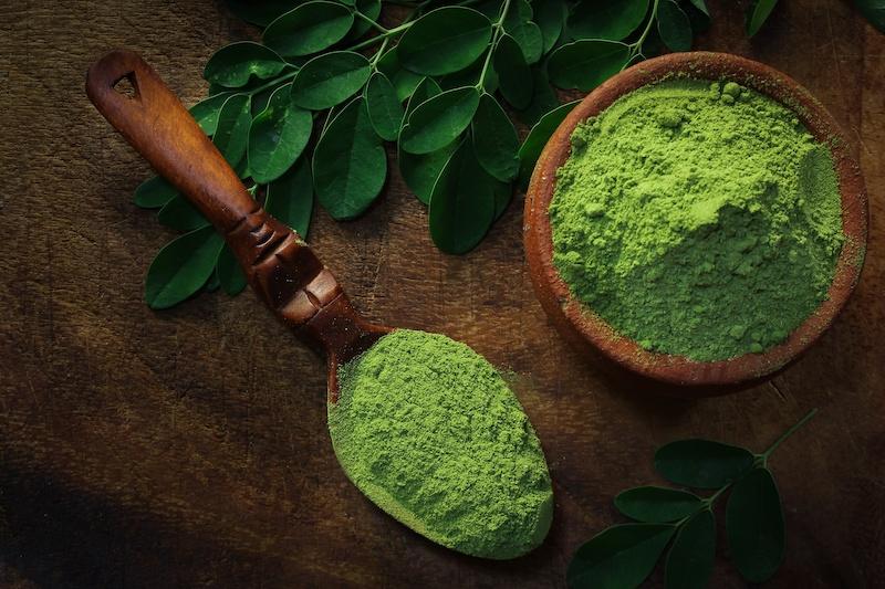 Moringa rich in antioxidants